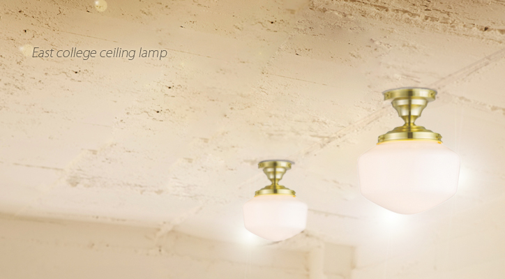 AW-0452 East college ceiling lamp S 詳細2