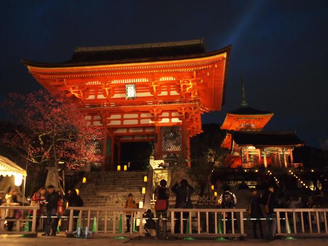 京都東山花灯路5