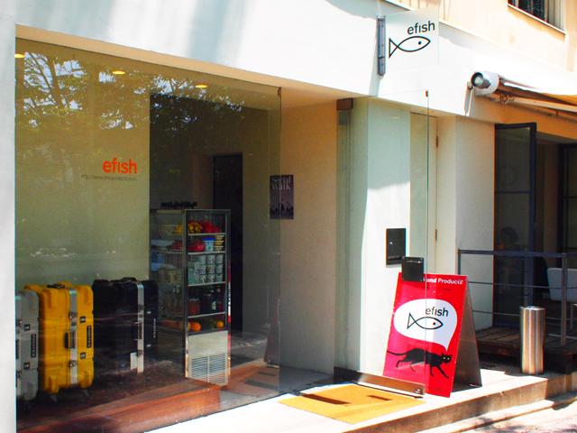 efish詳細2